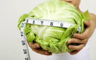 Капустный суп для похудения: рецепт, отзывы и результаты