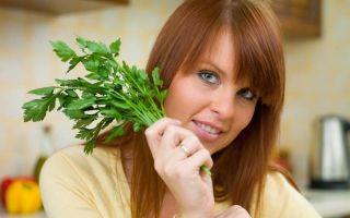 Петрушка для похудения: отвар, настой, рецепты и результаты