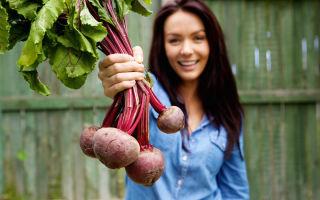 Свёкла для похудения: польза, рецепты и отзывы