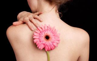 Как лечить прыщи на спине − 10 лучших домашних рецептов