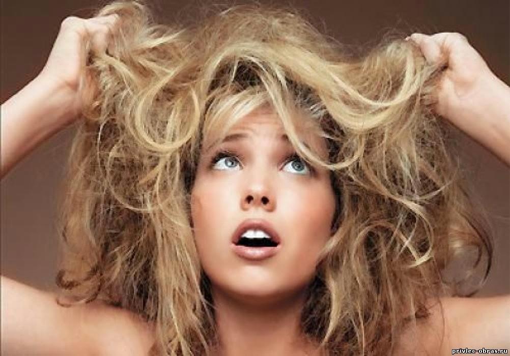 Сухие и ломкие волосы: как правильно увлажнить локоны?