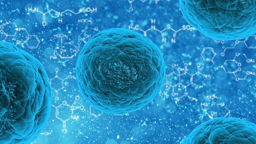 Мифы и реальность о стволовых клетках в косметологии.