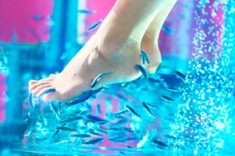 Пилинг ног рыбками: как проходит необычная процедура