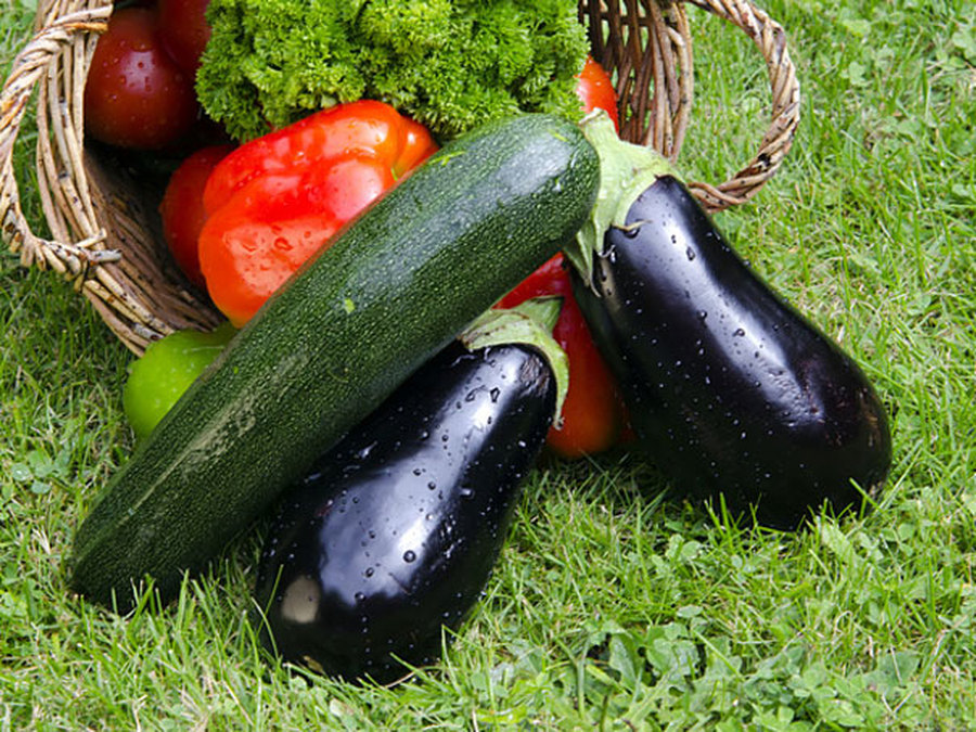 Кабачки и баклажаны для похудения: польза и диетические рецепты